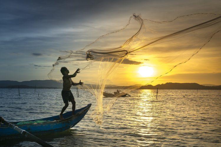 pescaria de tarrafa
